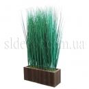 Трава в ящике